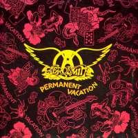 Gramofonska ploča Aerosmith Permanent Vacation Geffen Records, stanje ploče je 10/10