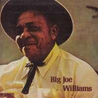 Gramofonska ploča Big Joe Williams Big Joe Williams 2221500, stanje ploče je 10/10