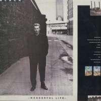 Gramofonska ploča Black Wonderful Life 2420597, stanje ploče je 10/10