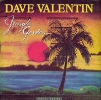 Gramofonska ploča Dave Valentin Jungle Garden GRP 91016, stanje ploče je 8/10