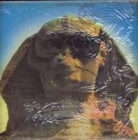 Gramofonska ploča Kiss Hot In The Shade 221066, stanje ploče je 8/10