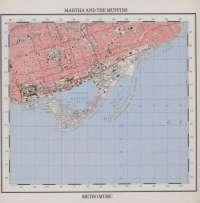 Gramofonska ploča Martha And The Muffins Metro Music 202 178-320, stanje ploče je 10/10