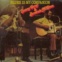Gramofonska ploča Sonny Terry & Brownie McGhee Blues Is My Companion INT 146.508, stanje ploče je 9/10