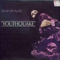 Gramofonska ploča Dead Or Alive Youthquake EPC 26420, stanje ploče je 9/10