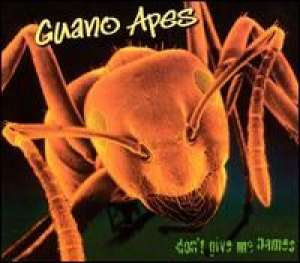 Don't give me names Guano Apes