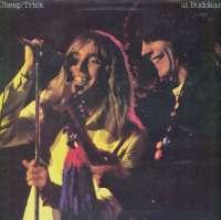 Gramofonska ploča Cheap Trick Cheap Trick At Budokan EPC 86083, stanje ploče je 10/10