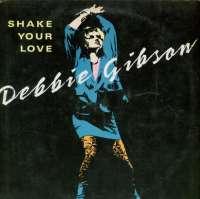 Gramofonska ploča Debbie Gibson Shake Your Love 786 651-0, stanje ploče je 8/10