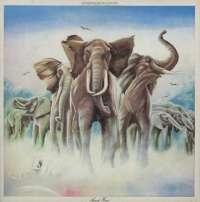 Gramofonska ploča Elvis Costello And The Attractions Armed Forces RAD 56597, stanje ploče je 9/10