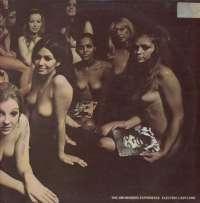 Gramofonska ploča Jimi Hendrix Experience Electric Ladyland 2310269/70, stanje ploče je 8/10