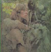 Gramofonska ploča John Mayall Blues From Laurel Canyon 820 539-1, stanje ploče je 8/10