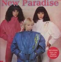 Gramofonska ploča New Paradise New Paradise 2221683, stanje ploče je 10/10
