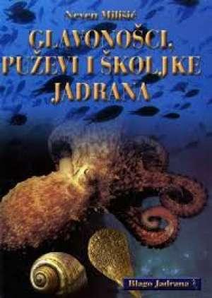 Neven Milišić - Glavonošci, puževi i školjke jadrana