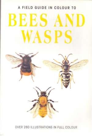 Jiri Zahradnik - Bees and wasps