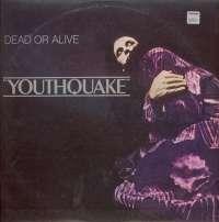 Gramofonska ploča Dead Or Alive Youthquake EPC 26420, stanje ploče je 8/10