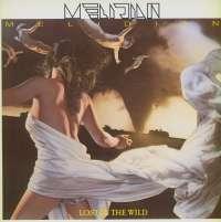 Gramofonska ploča Melidian Lost In The Wild 465424 1, stanje ploče je 10/10