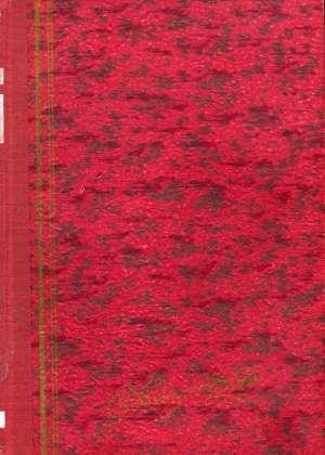 Tagore Rabindranath - Dom i sviet