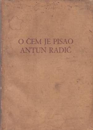 Antun Radić, Autor - O čem je pisao Antun Radić
