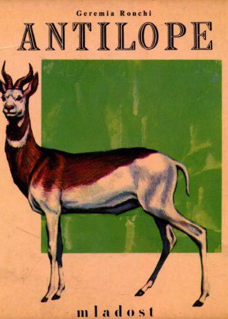 Geremia Ronchi - Antilope