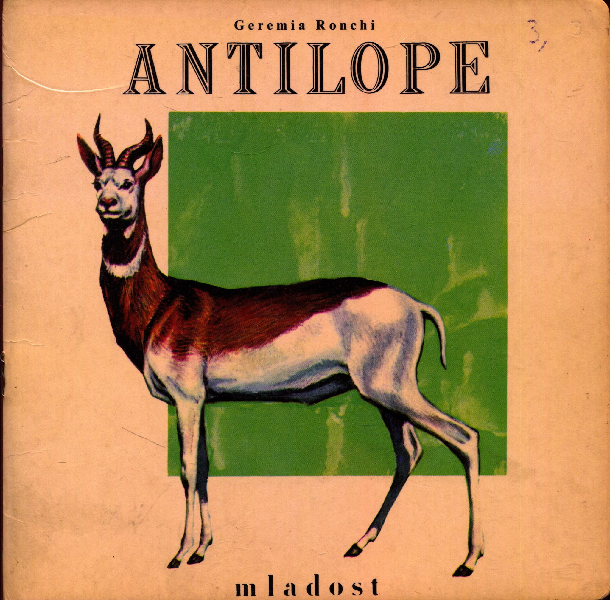 Antilope Geremia Ronchi