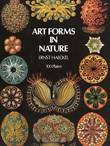 Art Forms in Nature Ernst Haeckel