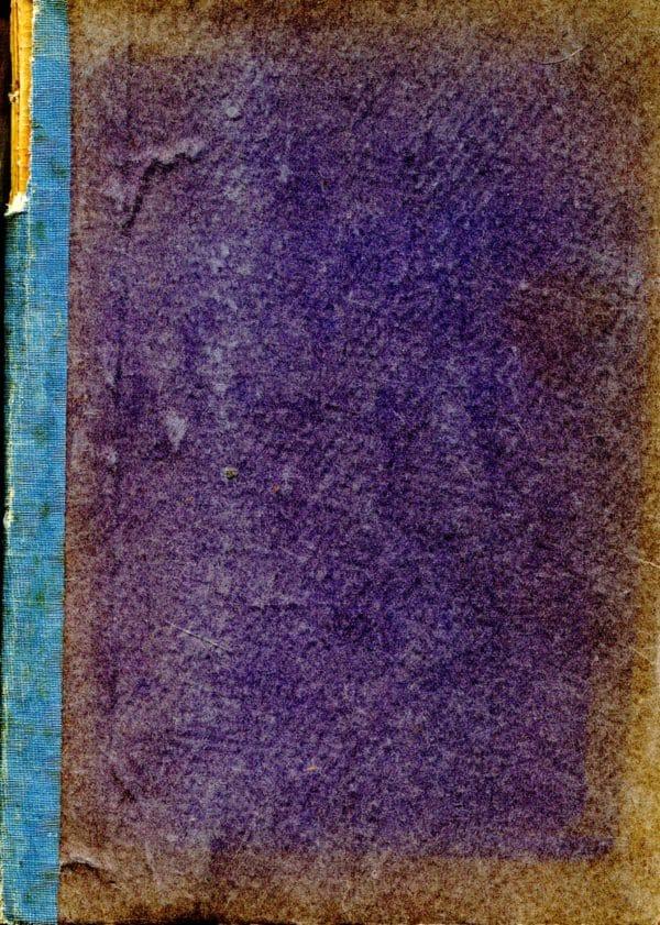 Zlatni kukac / Ubojica sam ja Poe Edgar Allan i Biggers E. D.